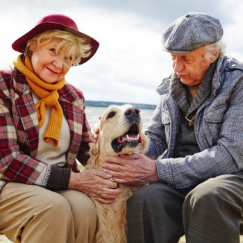 Retired couple playing with their pet outdoors