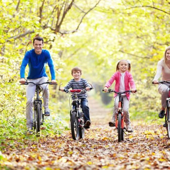 The family in the park on bicycles